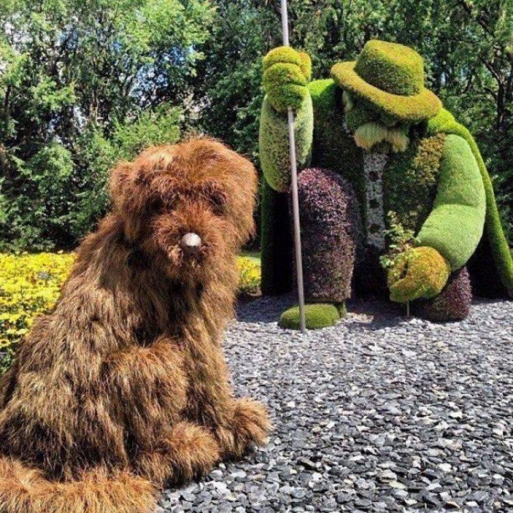 Садовые зеленые скульптуры (топиарий) своими руками